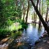 Small Santa Ana River - Big Bear area