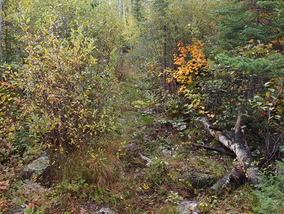 Brule Lake Trail Clearing Sept 21-23 2012