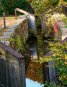 Canal Lock with Foliage, Reflections