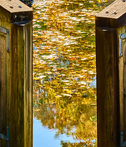 Canal Lock with Fallen Leaves