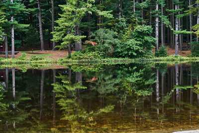 Reflections on Calm Water