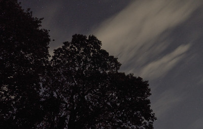 Clouds in Bright Moonlight