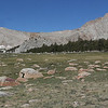 Cottonwood Meadow pano