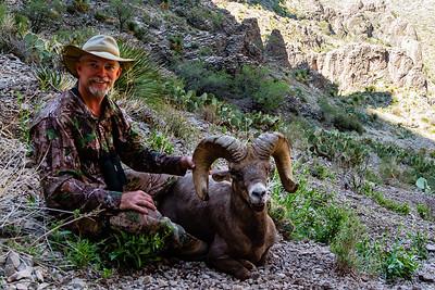 Desert Bighorn Hunt 2013
