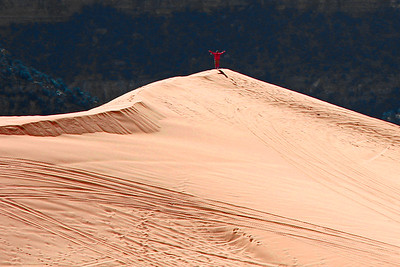 Deserts & Plains