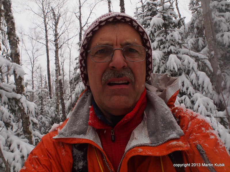 My gloves are getting very wet.  The baskets of my ski poles are trapped in the thick brush, my snowshoes are blocked by trunks of trees too close together, and my hat slips over the glasses when I bend down to avoid the falling snow.  It's not a cake walk any more.