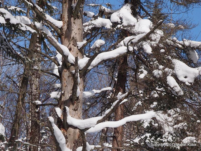 Snowy ridges.