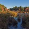 Otter Pond sunrise