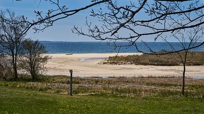 Harkness Beach 1