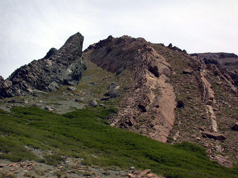 East dipping limb of Estero Campamento anticline.