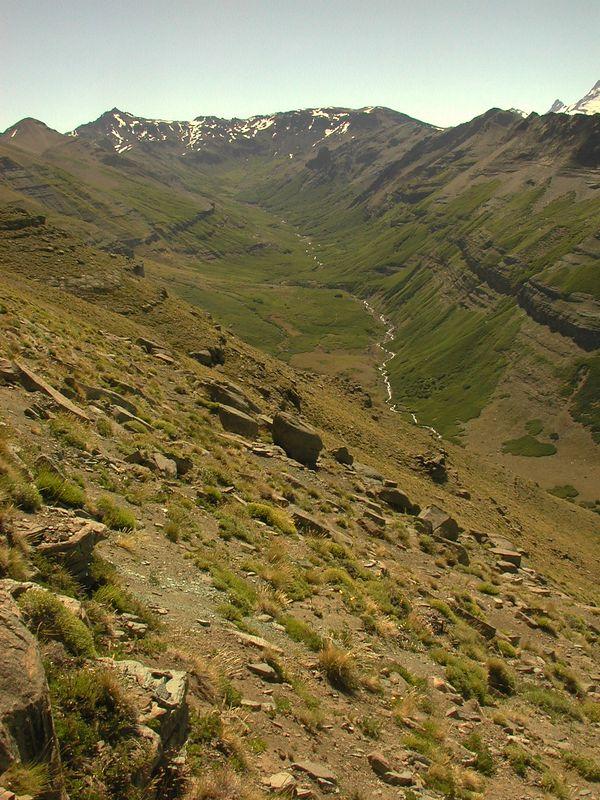 Cura Mallin valley.