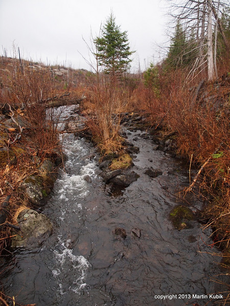 Creek from Fay Lake reminds me of Devil's Kettle at Judge Magney State Park, well sort off.