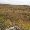"""Vast view from a knoll just 150 or so yards from Gabi campsite.  Yet the trail to camp is so badly overgrown that hikers have started making new paths... this """"damaging the resource.""""  Clearing and marking of the trail would alleviated that."""