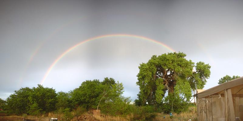 Backyard Rainbow in June