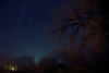 Star Trails waiting for a Geminid.