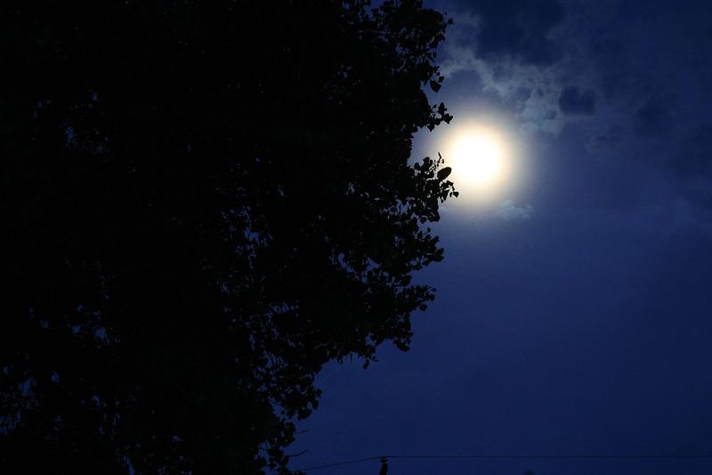 Moon 'n Cottonwood