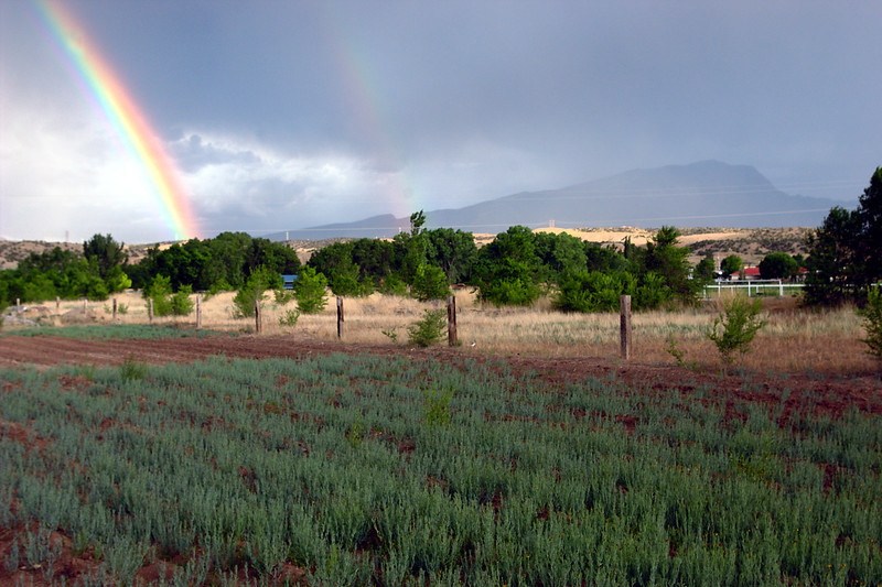 Rainbows with Sandia Mountain in Background