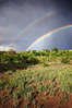 June 24th Double Rainbow Part II