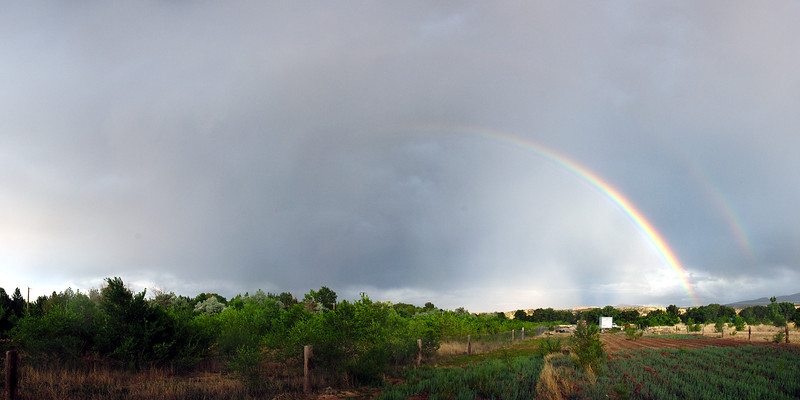 Backyard Double Rainbow in July