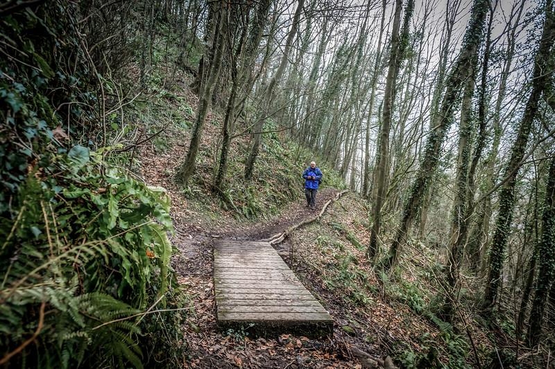 DigiDavesPhotos-Wales-2017-03