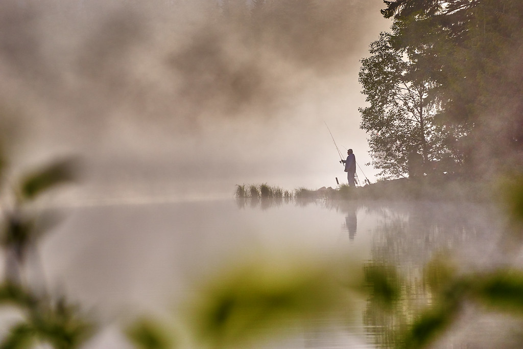 Foggy morning fishing