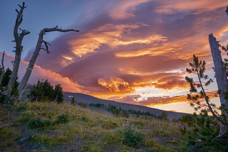 Sunrise over Meadows