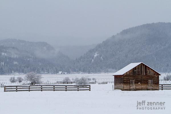 Frozen Pasture