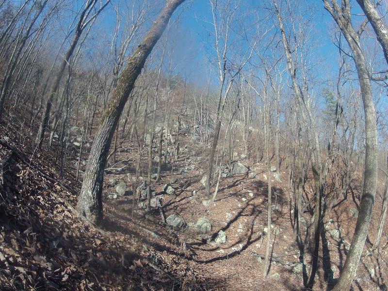 Burins trailhead (Dugger mountain section of Pinhoti Trail)