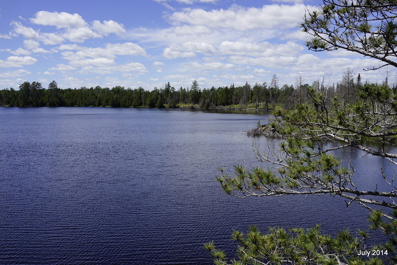 View from high bluff on Pow Wow Trail where it meets Horseshoe Lake (coming from east side).