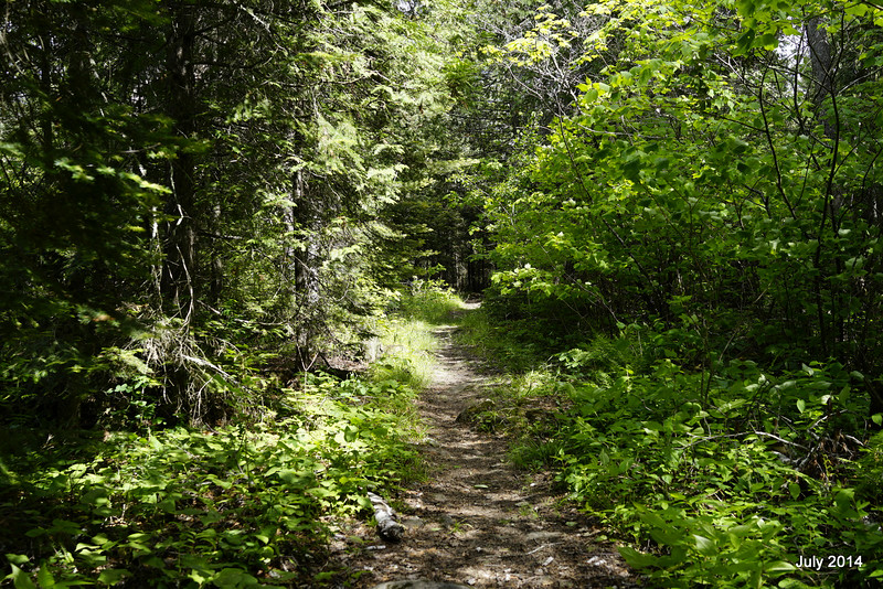 A fine trail it is. Er, no, this is a portage to Lake Three, not the Pow Wow.