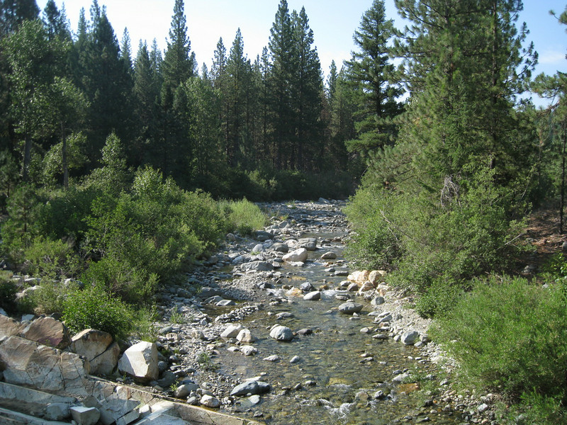 Jamison Creek