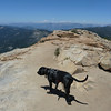 Sawyer atop Big Baldy