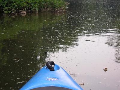 Paddling Shermans Creek June 17 2007 019