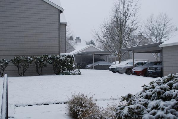 Second snow of 2008