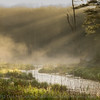 Swift River and morning fog, #4
