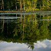 Reflections on a beaver pond