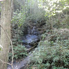 Lower Oil Creek Camp Falls, SC