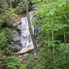 Log Hollow Branch Falls 1, NC