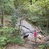 Vaughn Creek Falls, NC near Tryon, NC