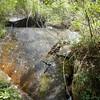 Eastern Stream Falls 1, SC