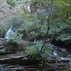 Lower Cascade Falls, NC