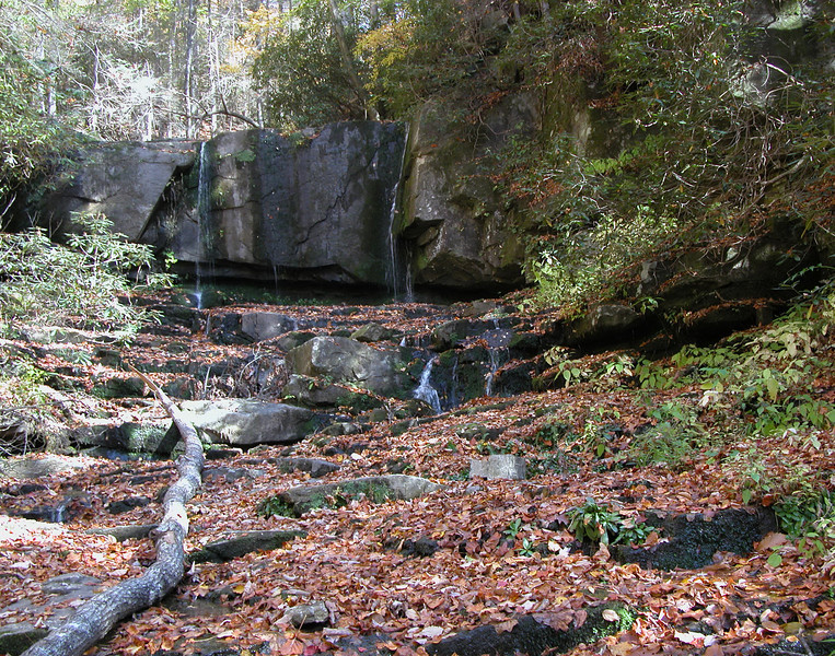 Virginia Hawkins Falls, SC