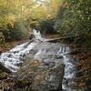 Sams Branch Lower Falls, NC