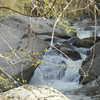 Fishtop Falls, NC