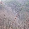 Corbin Creek Falls, NC