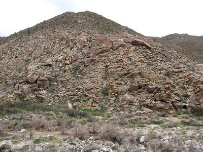 Car Camp (Carrizo Canyon) 02-07-2009