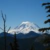 Mount Rainier from the ridge to Bismarck Peak