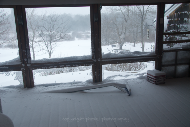 Back deck, after several hours, with fine powdery snow driven through the screen.