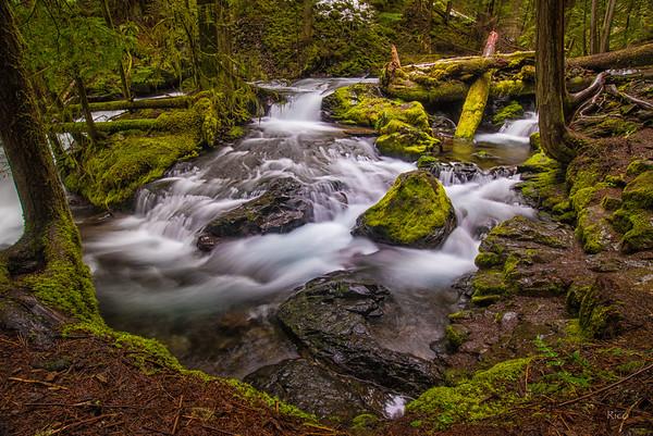 Panther Creek