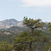 Black Hills Panorama